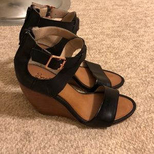 Seychelles black wedge